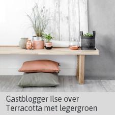 Gastblog Ilse Terracotta met legergroen