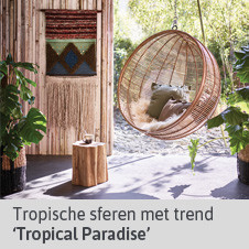Blog tropical paradise